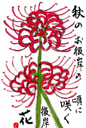 20090916higanbana.jpg
